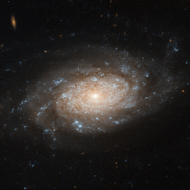 Barred Spiral Galaxy NGC 3259 spotted by Hubble