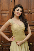 Pranitha Subhash Photos at Pandavulu Pandavulu Tummeda Audio-thumbnail-16