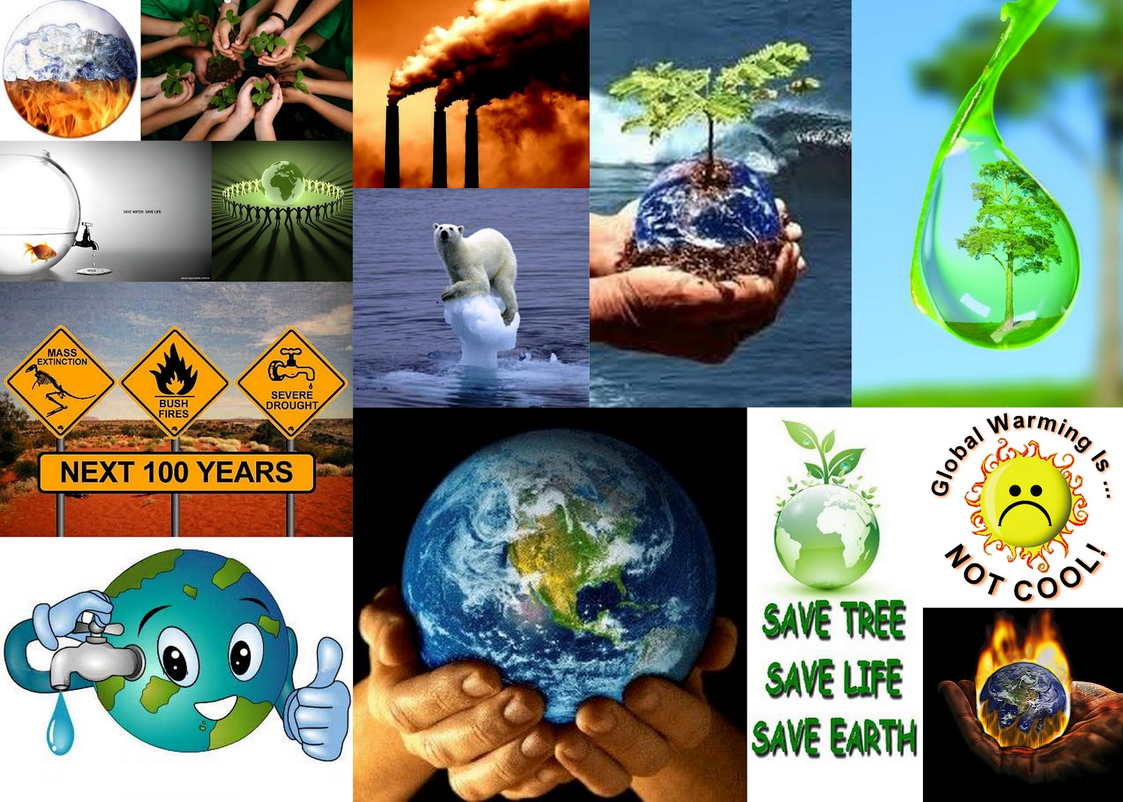 Essay About Saving The Earth