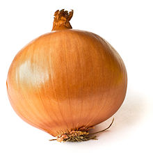 A nice tasty onion - the foundation of food!