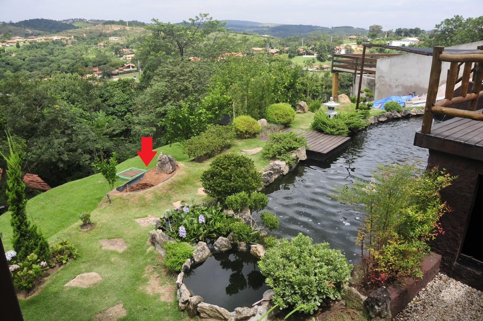 jardim é lindo e olha que ainda faltam mais 2 pinheiros para o jardim  #4D5F2E 1600x1062