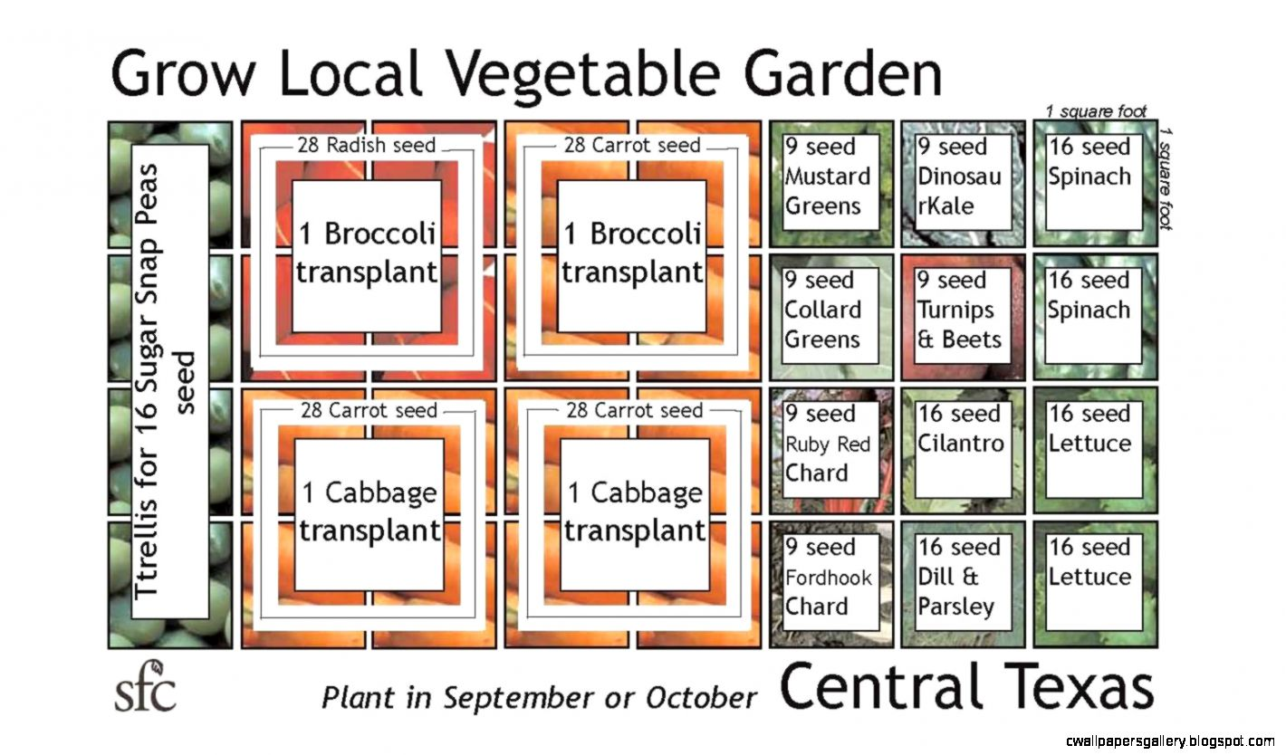 Square foot vegetable garden layout wallpapers gallery for Garden design ideas for medium gardens