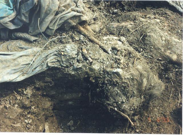 ... Srebrenica massacre. Exhibit P35, Karadzic trial. Photo courtesy of