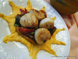 SCALLOPS on SQUASH web