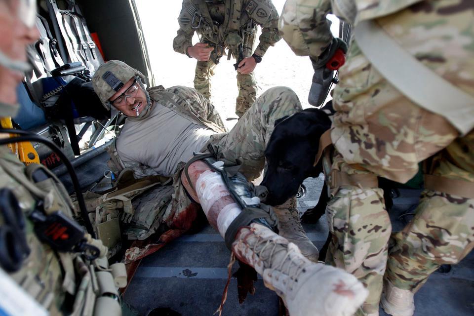 Military dog airborne - photo#27