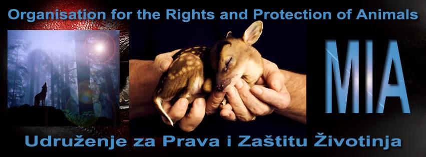 Udruzenje za Prava i Zastitu Zivotinja MIA