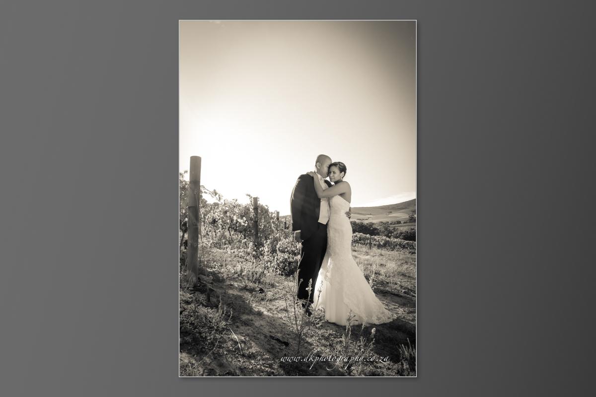 DK Photography DVD+slideshow-317 Cleo & Heinrich's Wedding in D'Aria, Durbanville  Cape Town Wedding photographer