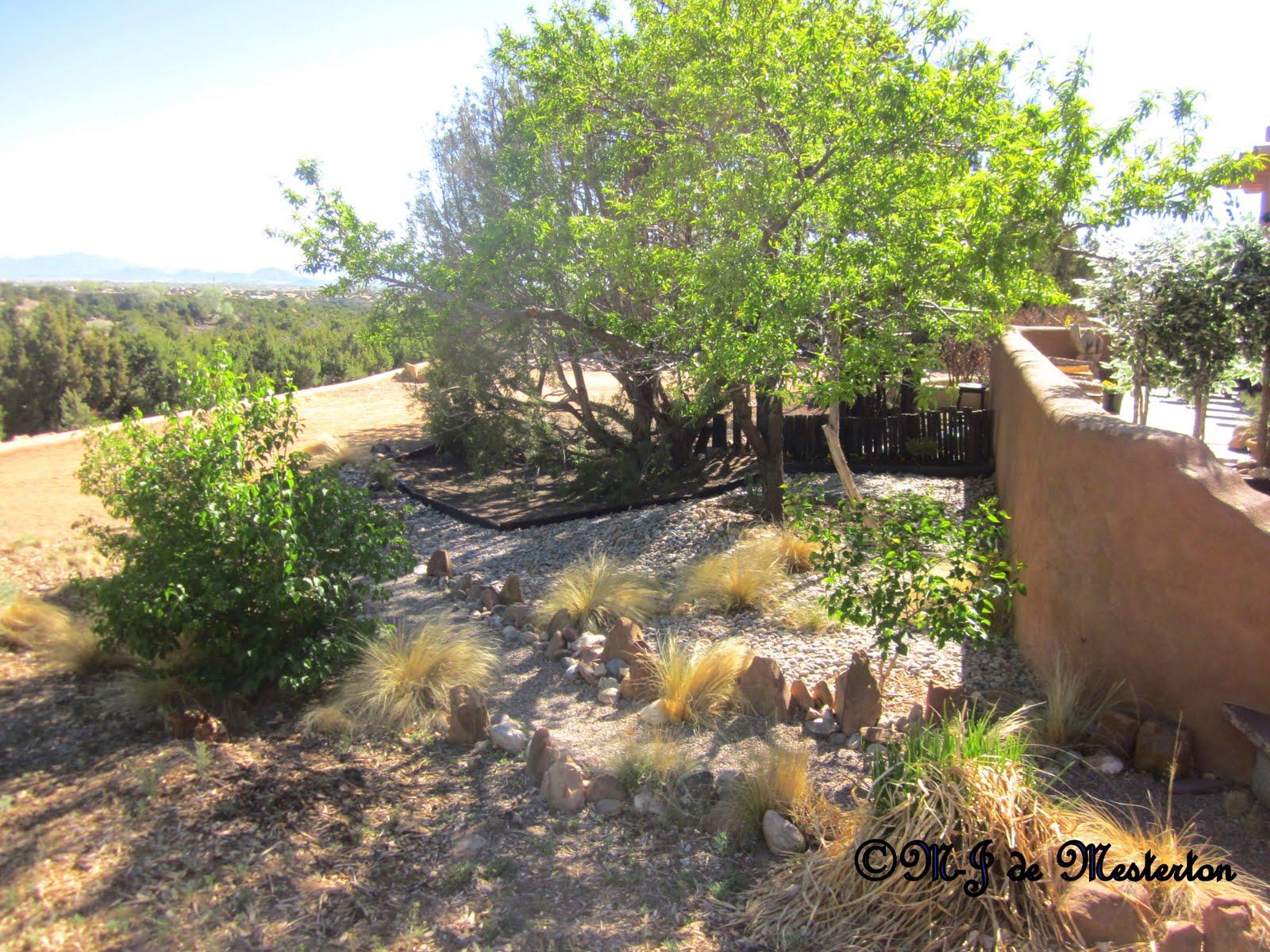 Elegant landscaping gravel for water conservation for Elegant landscaping