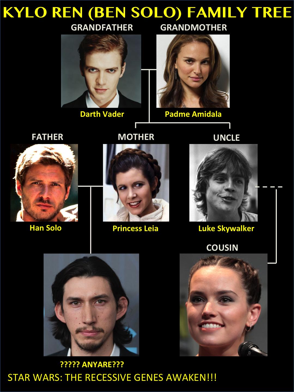 skywalker family wookieepedia fandom powered by wikia