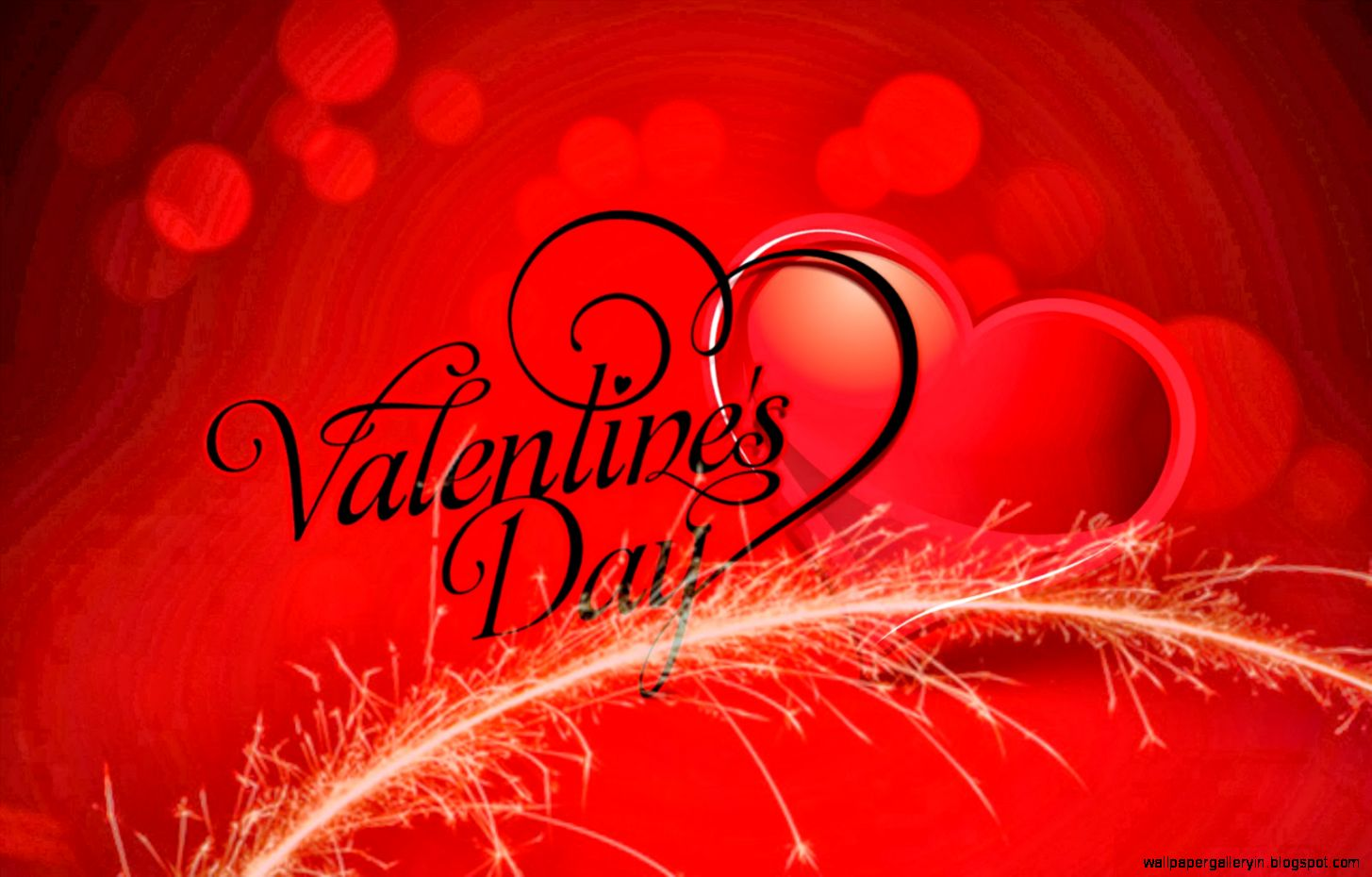 Valentine Live Wallpaper Hd Free Android Download | Latest Mobile