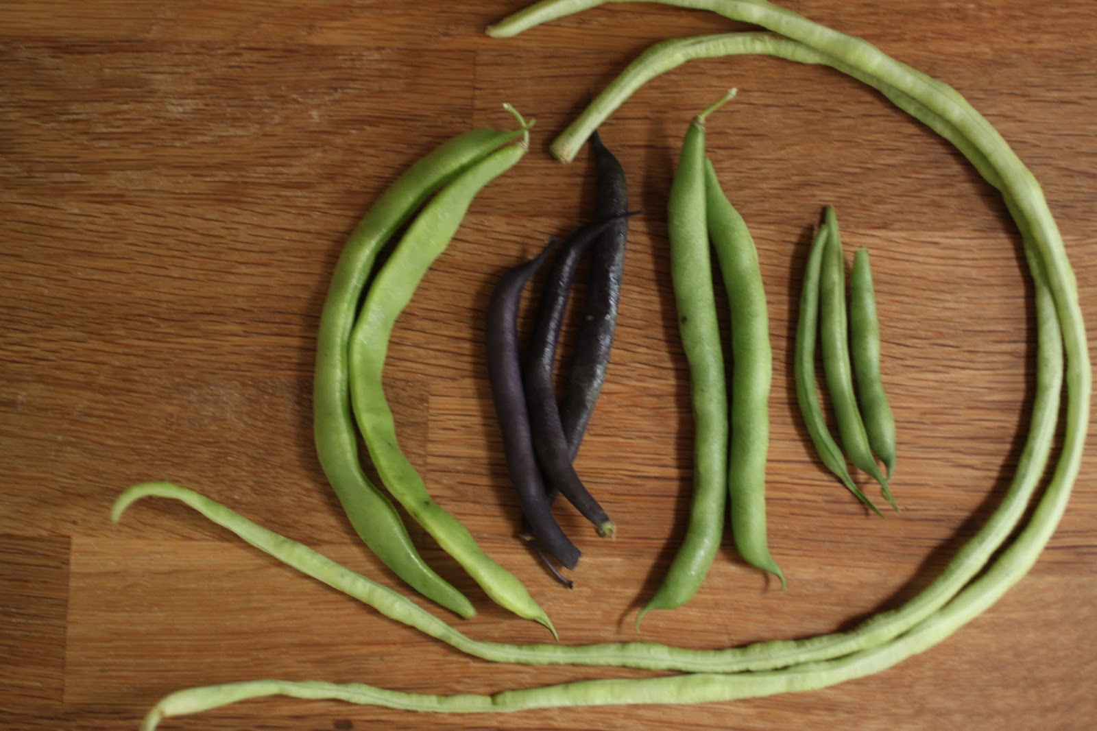 easier than pie: cooking the books: szechuan green beans and shrimp ...