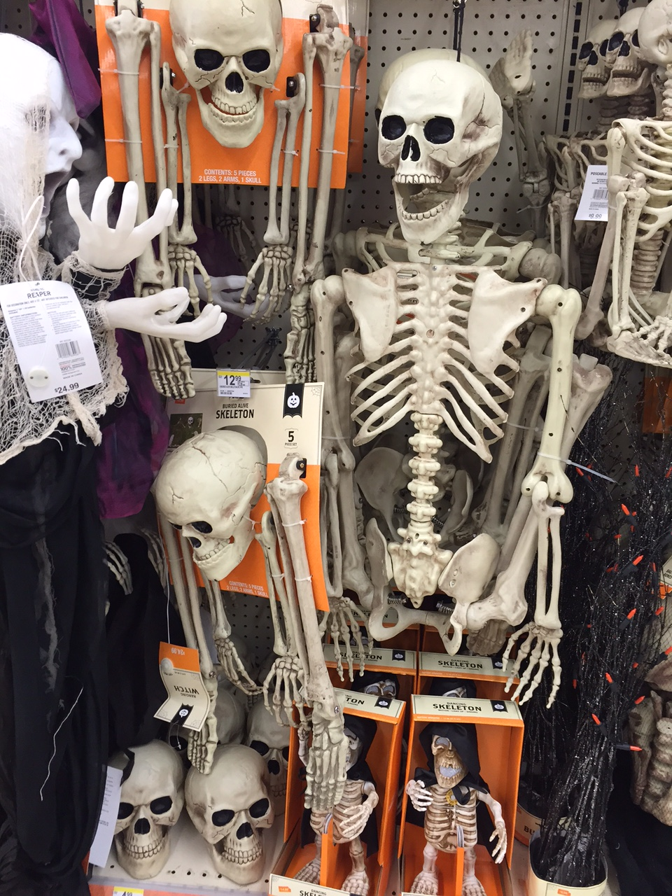 more stuff from walgreens colored skeletons too last 3 images are from a hallmark display there the spooky sounds light ups were neat - Walgreens Halloween Decorations