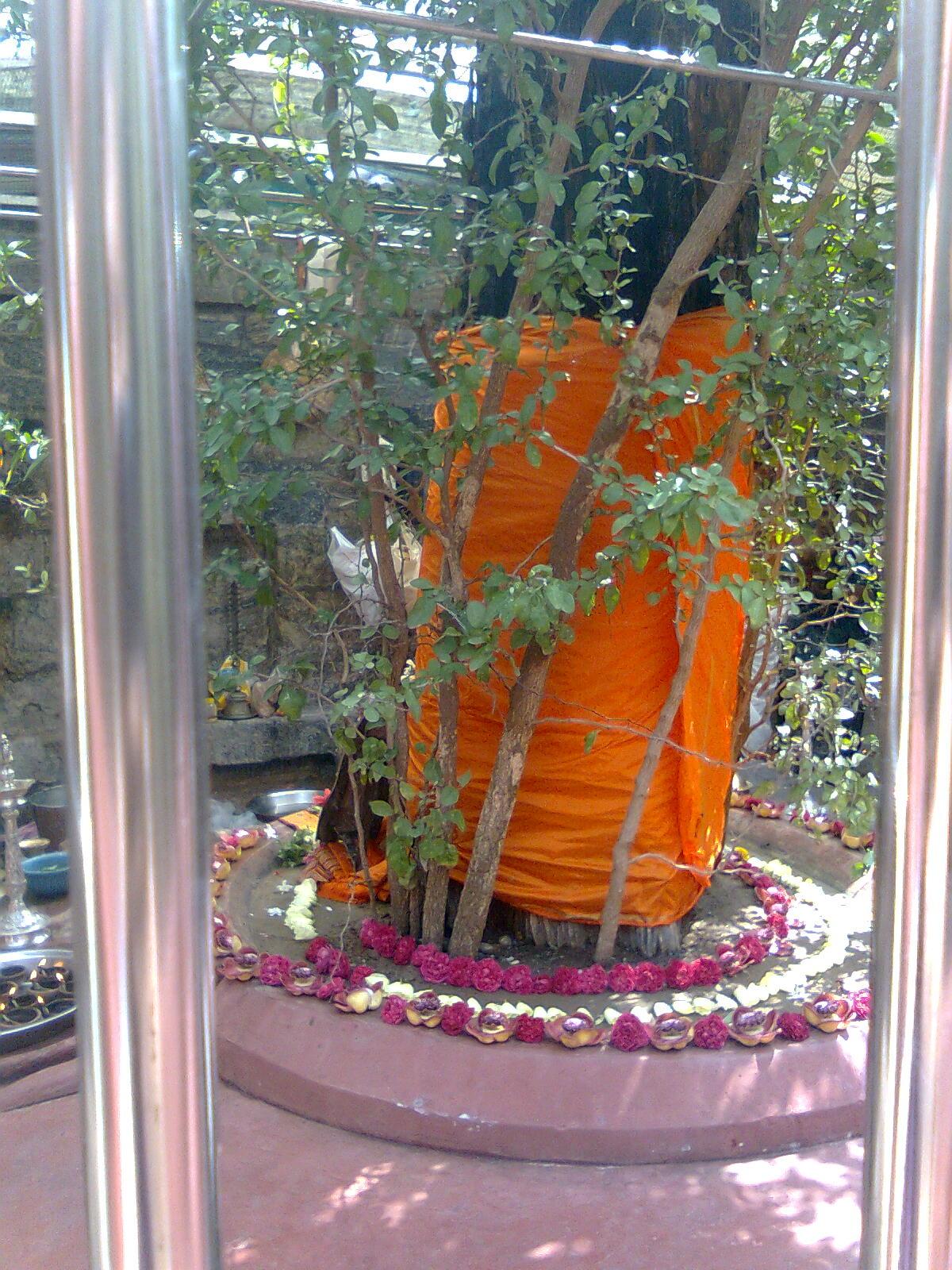 Sadasiva brahmendra jeeva samadhi pictures