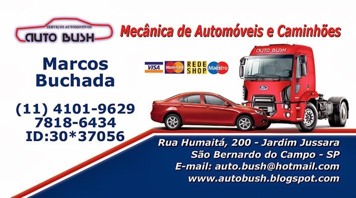 AUTO BUSH
