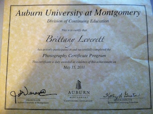 Professional Photography Certification:
