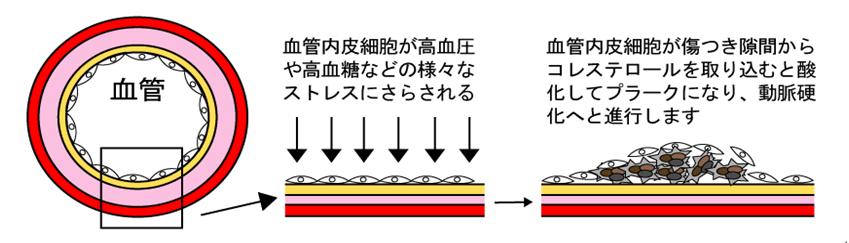 本 説 伝 (ホントツタエ)