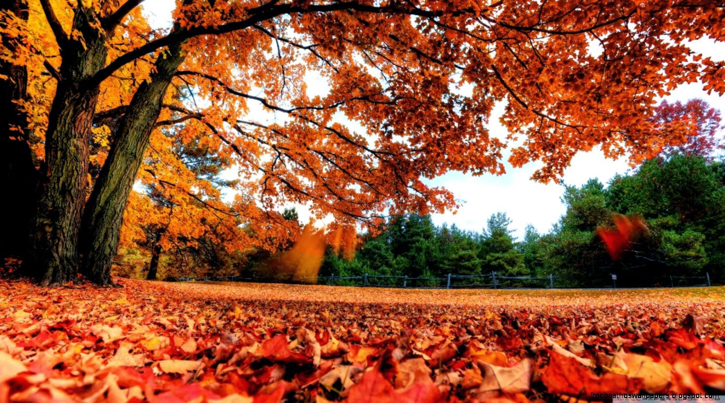 country fall wallpaper free best hd wallpapers