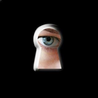 Cydia Spionage app
