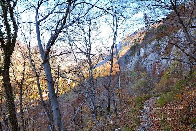 domogled-peak-hike-track