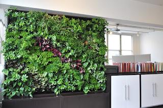 jardim vertical interior no escritório