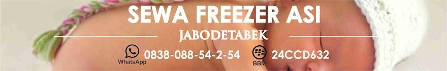 Sewa Freezer ASI Jabodetabek