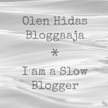 Hidas bloggaaja