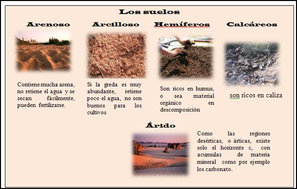 Proyecto integrador for Suelos y tipos de suelos