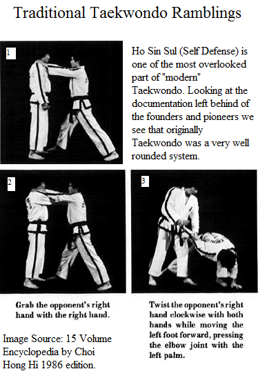 Traditional taekwondo ramblings taekwondo is not and has never been as you can see above taekwondo was a very holistic and very well rounded art and not as simple kick block punchy as people today believe fandeluxe Images