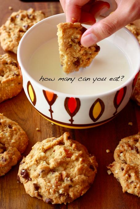 Ceylon cinnamon chocolate chip cookies recipe by SeasonWithSpice.com