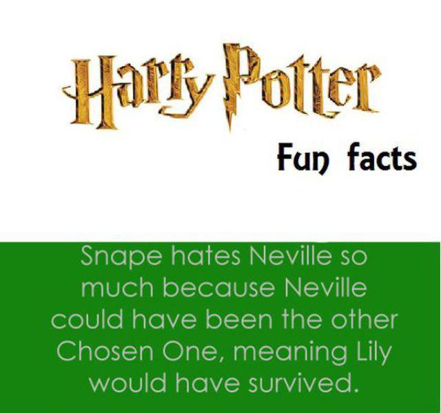 Trivia Fun Facts: Chuck's Fun Page 2: Harry Potter Fun Facts