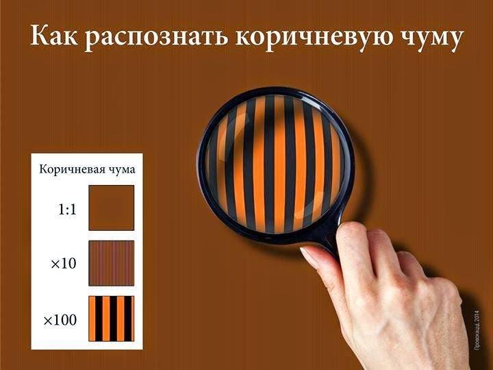 Крымчан, оставивших украинский паспорт, заставят признаться - за неповиновение предусмотрена уголовная ответственность - Цензор.НЕТ 8838