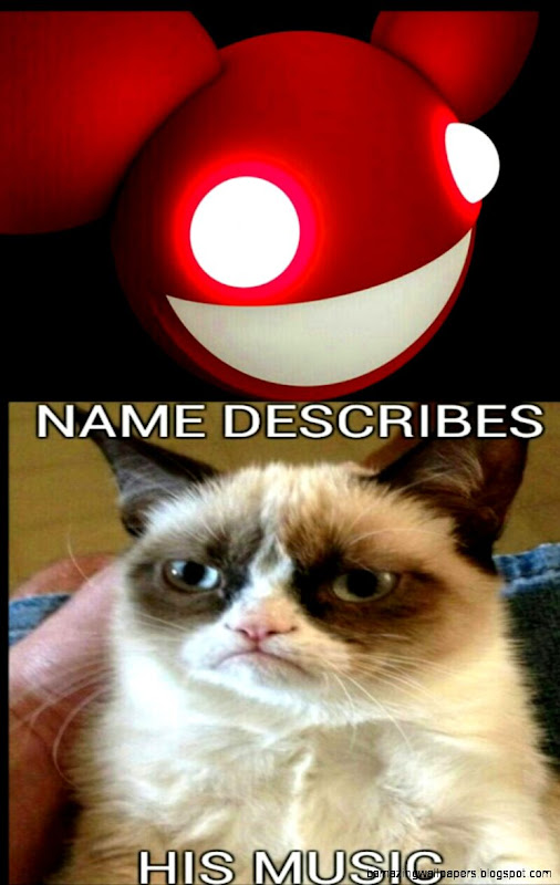 grumpy cat thinks deadmau539s name describes his music  Grumpy Cat