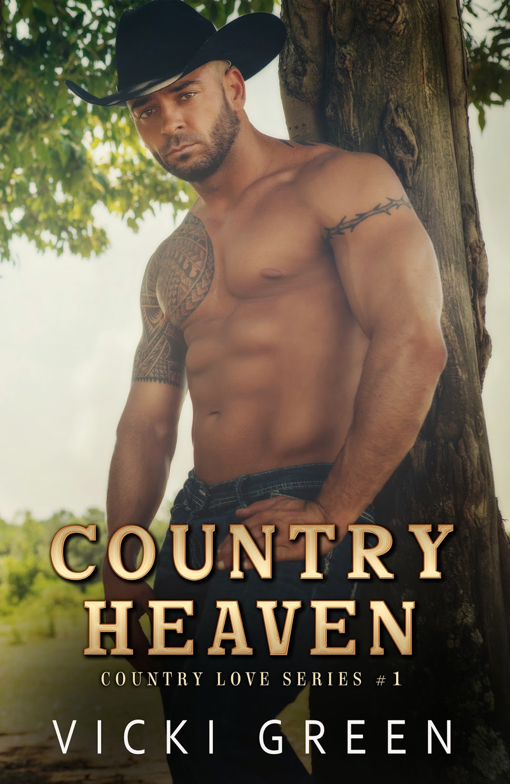 Country Heaven (Country Love Series #1) by Vicki Green Cover Reveal