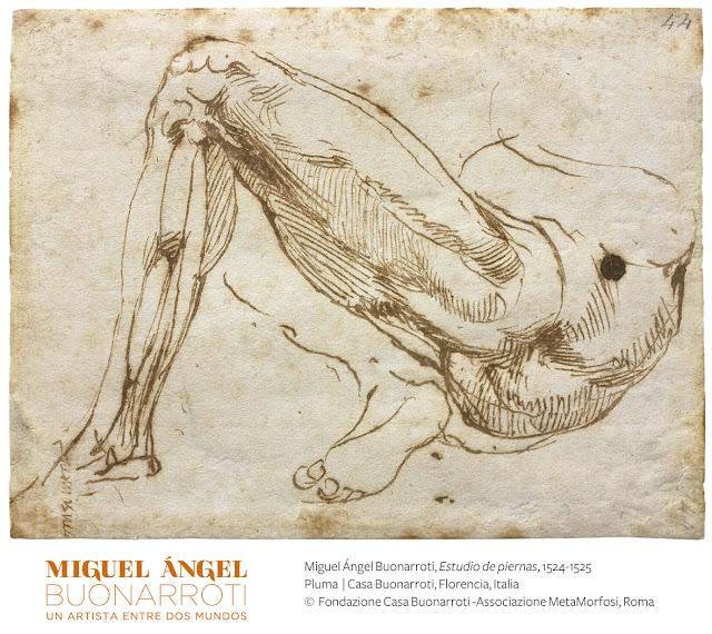 El arte de Leonardo da Vinci y Miguel Ángel Buonarroti llega por primera vez a México