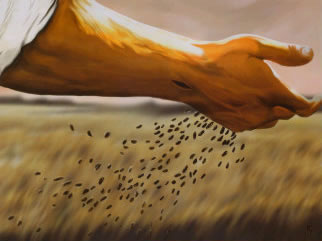 Image result for parable of the sower
