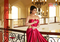 Sameera Reddy in CCL 2012 Calendar