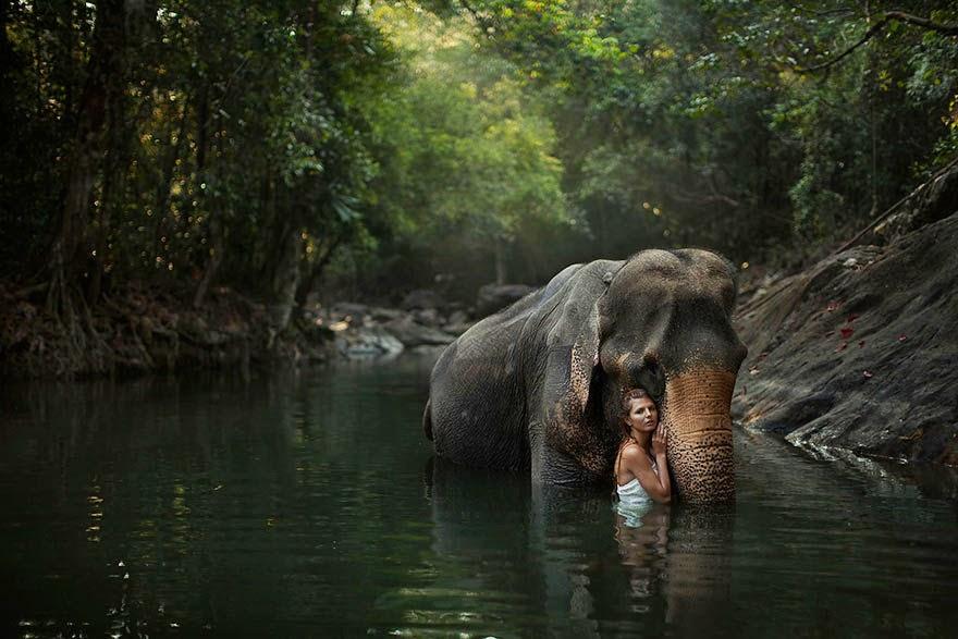 katerina plotnikova sesion de fotos con elefante