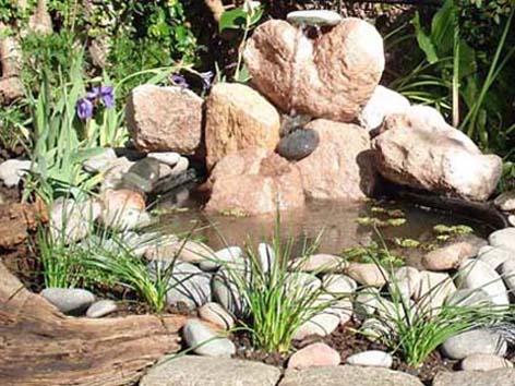 Reverdir jardineria y paisajismo estanques for Paisajismo estanques