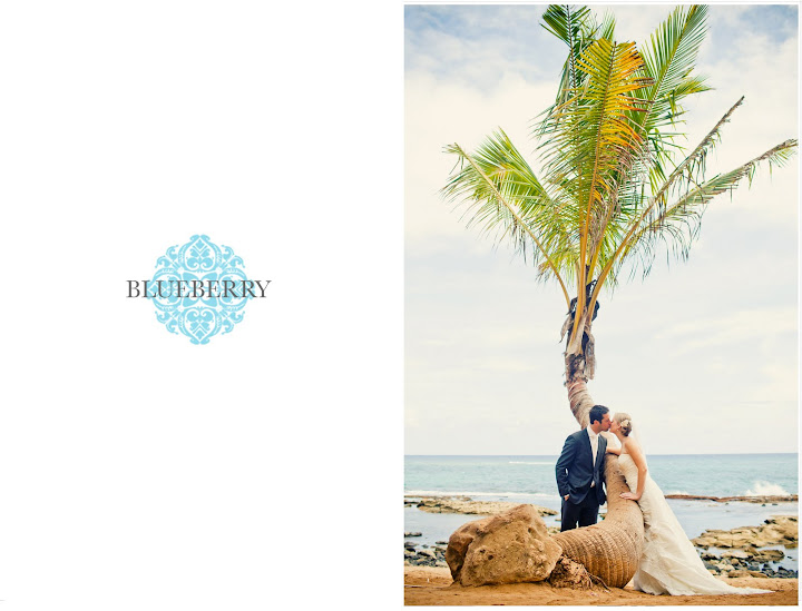 Beautiful road to hana maui hawaii day after wedding photography session