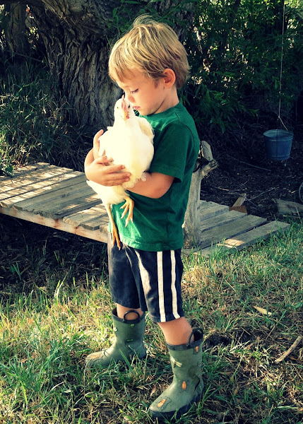 Kids & Pets {Lessons Learned} by Blissful Roots