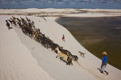 Brazilian Sand Dunes Seen On www.coolpicturegallery.us