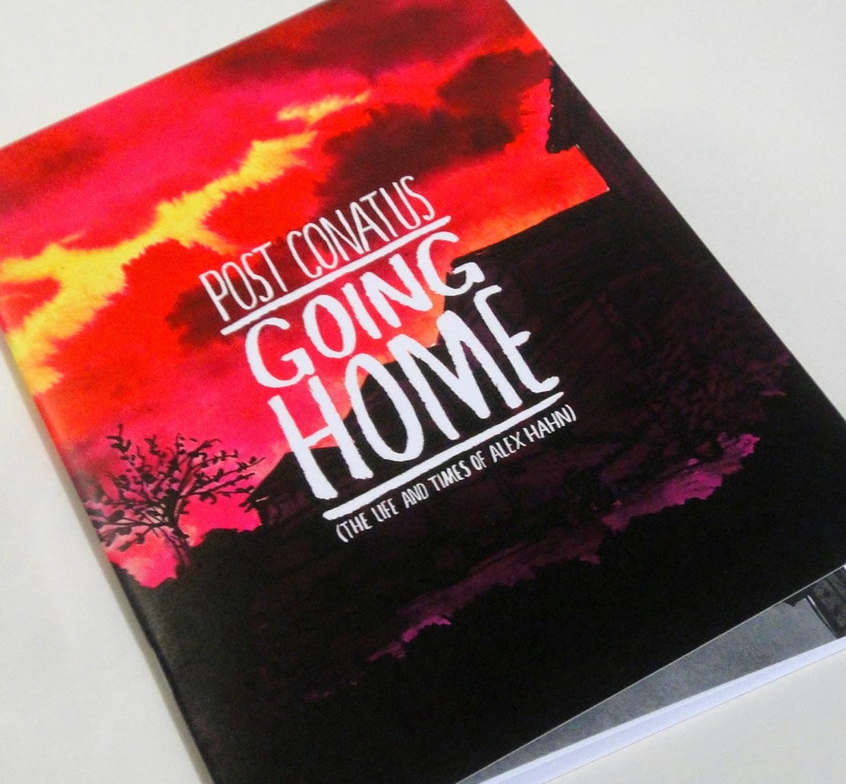 Photo of comic book 'going home' by Alex Hahn