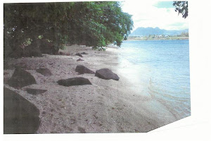 Mauritius - Balaclava Beach - Water Front Vacant Land - Online Auction