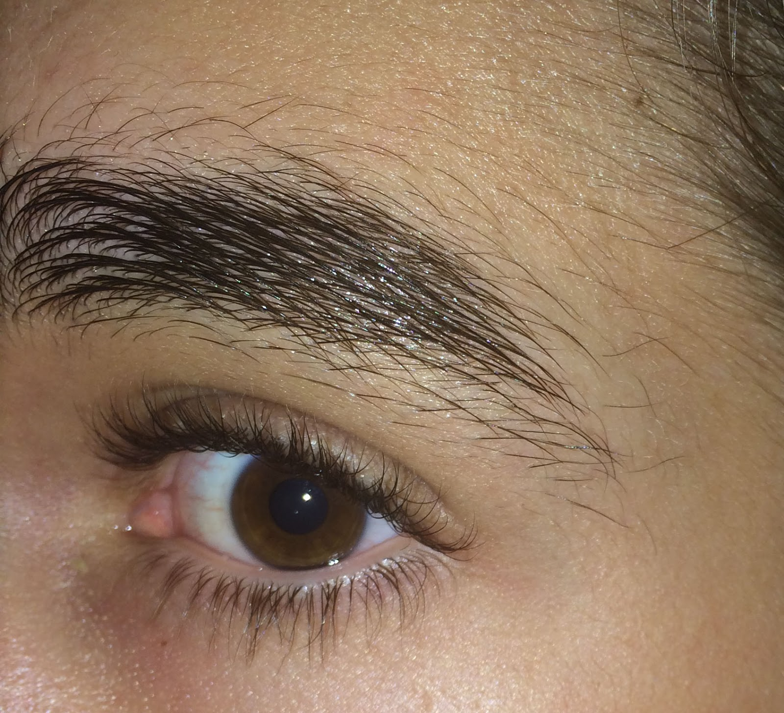 Rapid Brow My Review In Pictures Reviews By Ellis