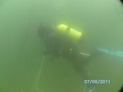 Diver and quadrat