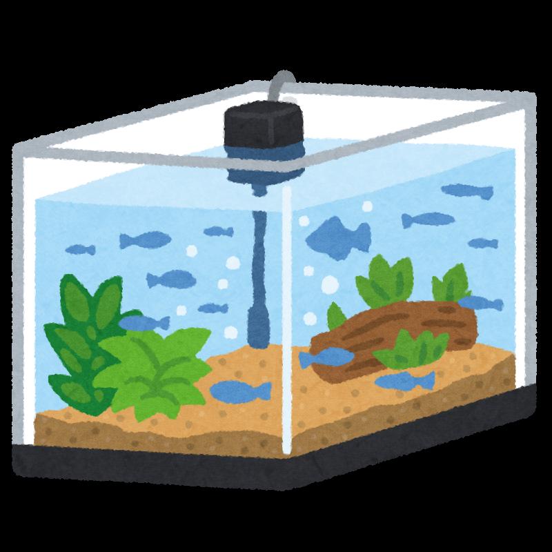 魚の入った水槽のイラスト | かわいいフリー素材集 いらすとや