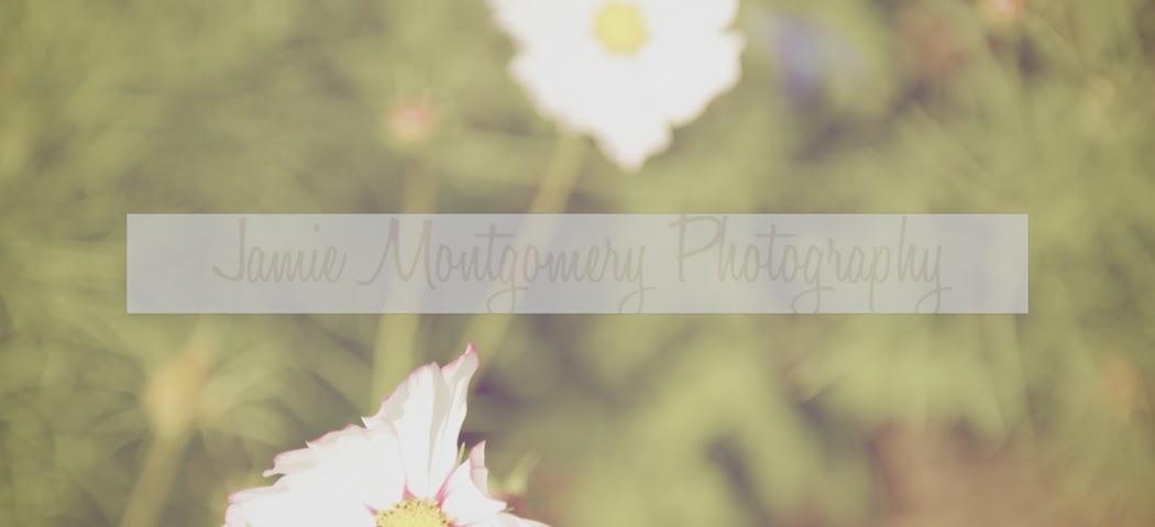 Jamie Montgomery Photography