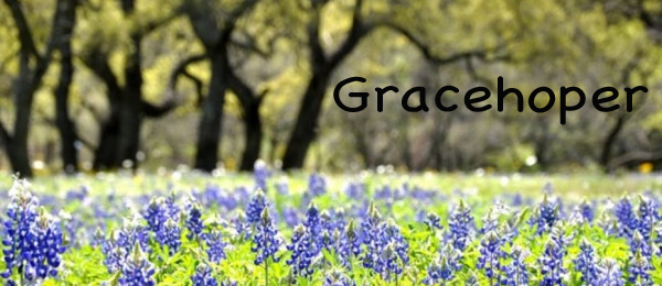 Gracehoper