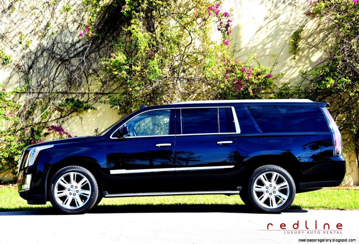 Reasons for Renting American Luxury Cars  Reasons for Renting