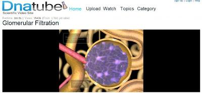 DNATube - Vídeos científicos gratuitos